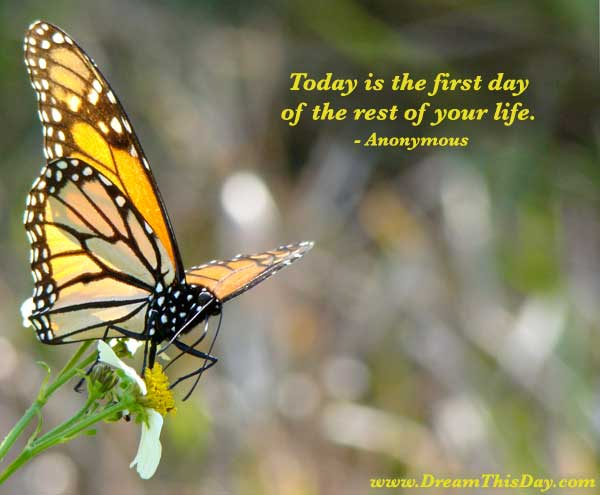 today-first-day.jpg (600×495)